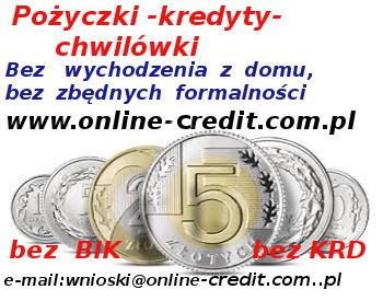 Kredyt Dopasowany Do Twoich Potrzeb. Bez Bik I Krd